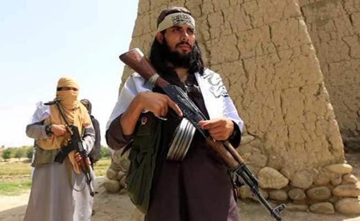 taliban 9 nov 18