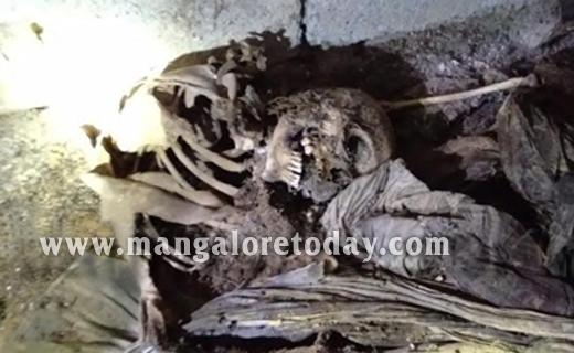 Skeletal2