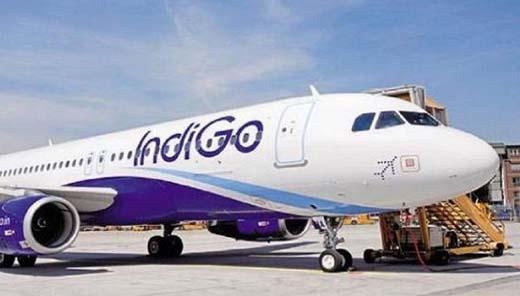 Indigo-Air.