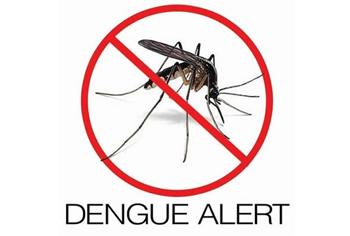 dengue.jp