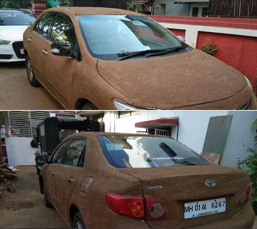 car-cool-cow-d...