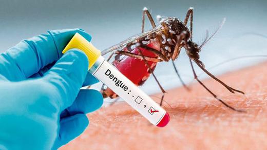 dengue-fever19...