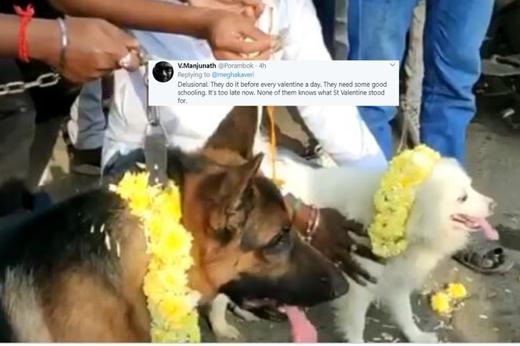 Dogs-married14feb2020