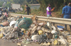 14 tons of garbage cleared by volunteers near Nethravathi river