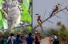 Birders �Walk the Chirp� in Manipal