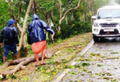 12 Dead in West Bengal, Cyclone Amphan damages 5,500 houses