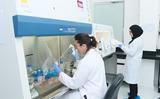New liquid biopsy lab established at Gulf Medical University