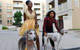 Dubai-based Indian teen designs 2020 calendar to promote dog adoption
