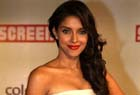 Asin is reportedly marrying Micromax Mobile founder
