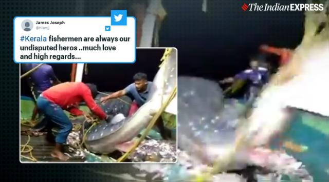 Kerala fishermen praised for releasing endangered whale shark they had trapped