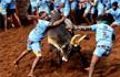 Tamil Nadu: 2 Men watching bull-taming festival Jallikattu killed