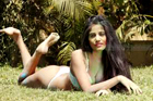 Poonam Pandey endorses undergarments web campaign on Holi