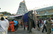 Plastic-free Tirumala town to have glass bottles for drinking water