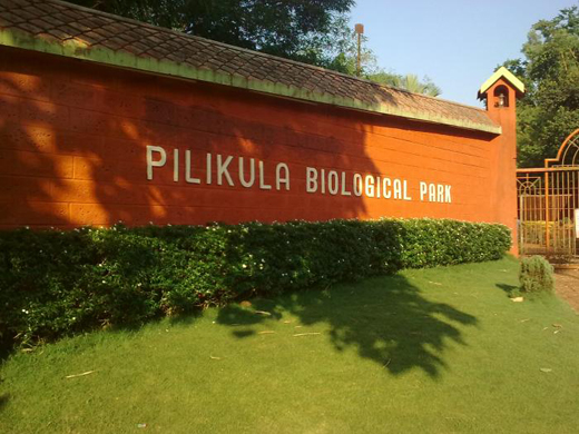 pilikula water park