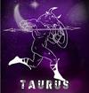 taurus_2015