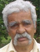 J B Pereira